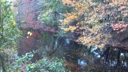 2012-10-28_15-22-53_927