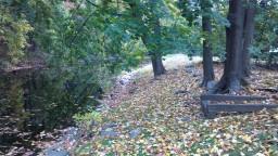 2012-10-28_15-23-22_553