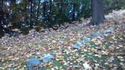 2012-10-28_15-24-54_604